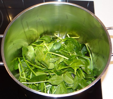 How to make fresh spinach pasta – Stefan's Gourmet Blog