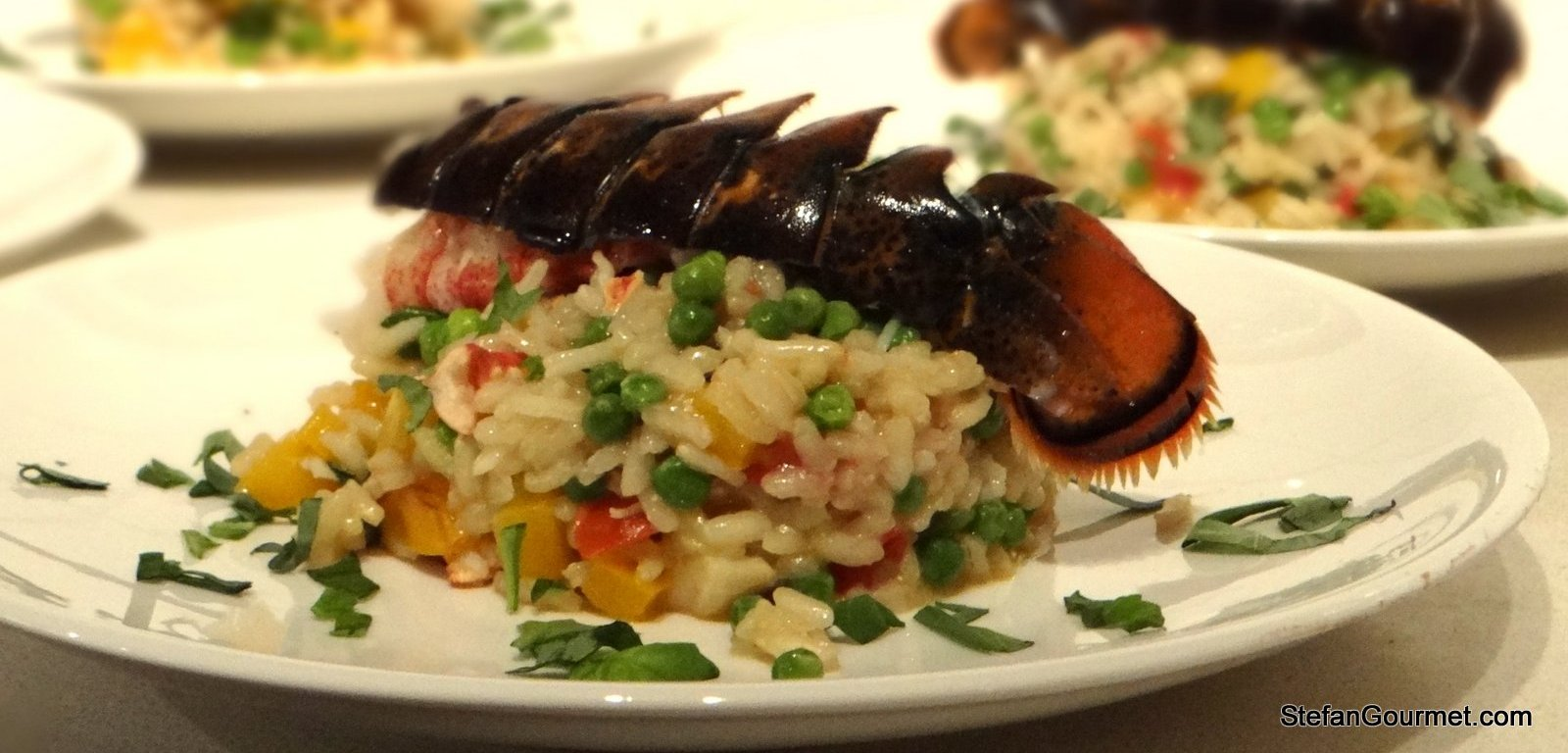 Lobster Risotto Like No Other Stefan S Gourmet Blog