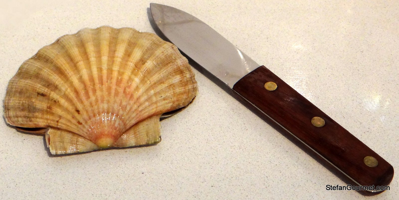 scallops to sous vide or not to sous vide that s the question it s always nice to buy scallops in the shell because that means i get to use my french knife whose sole purpose is shucking scallops