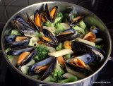Pasta with Mussels, Roquefort and Broccoli