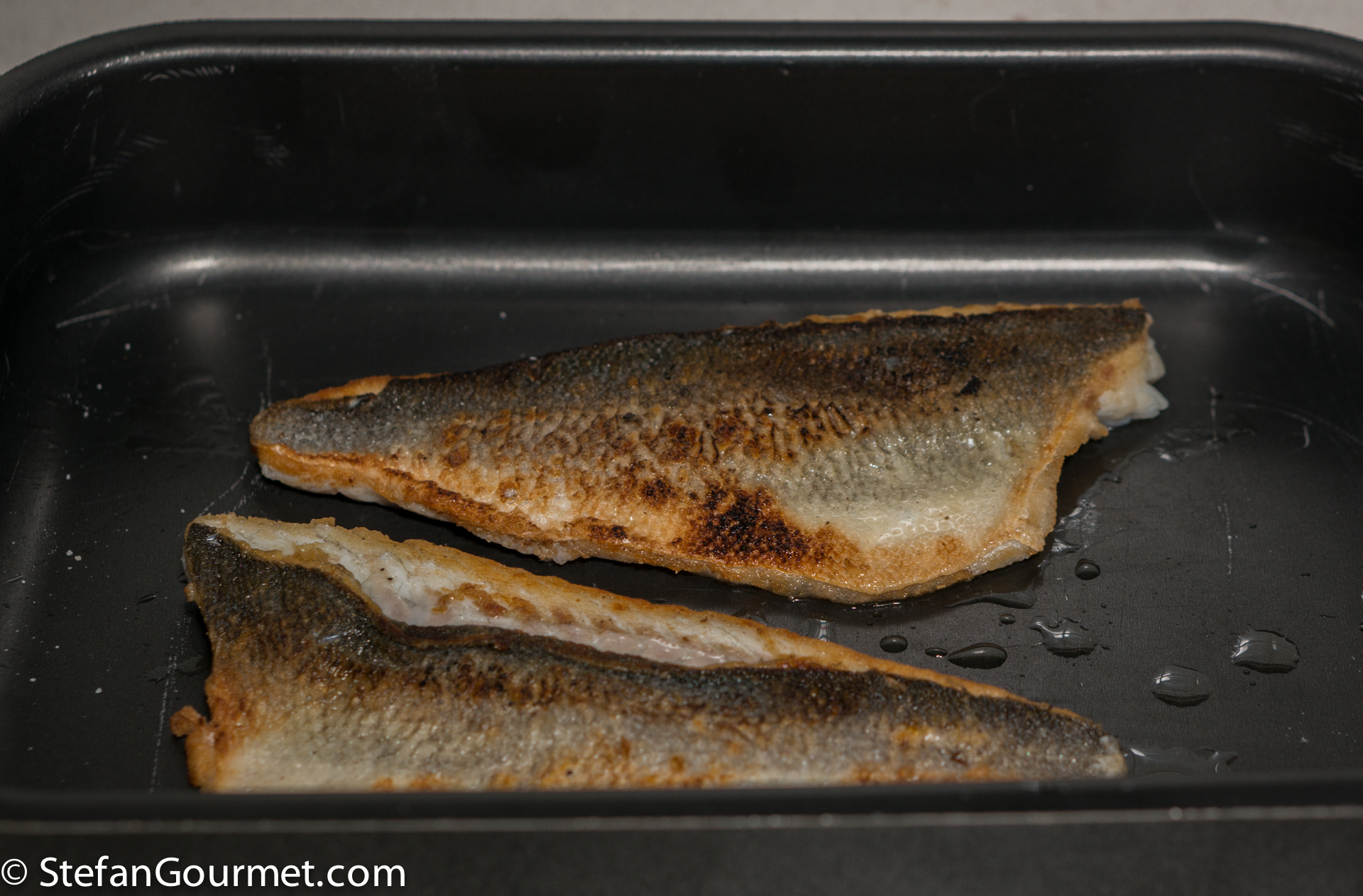 How to cook fish fillets on the skin stefan 39 s gourmet blog for How to cook fish fillet